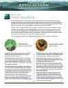 Fact Sheet: Habitat - Forest/Woodlands