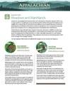 Fact Sheet: Habitat - Meadows and Marshlands