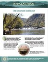 Fact Sheet: Tennessee River Basin Network
