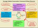 SHC Framework & Basic Elements