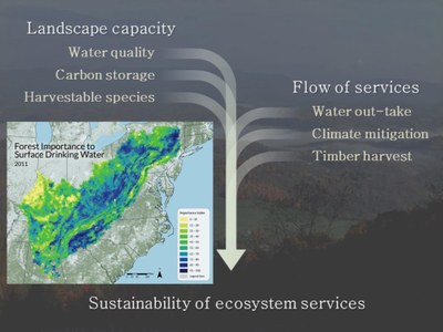 Sustainability of ecosystem services (1)