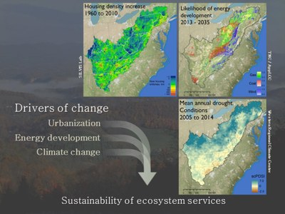 Sustainability of ecosystem services (2)