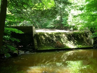 Removal of Two Dams in the Wetmore Run Watershed, Potter County, PA