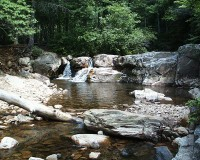 Copper Creek In-Stream Habitat Restoration Project