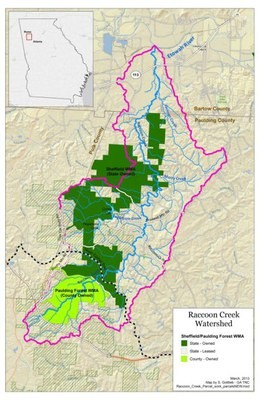Raccoon Creek Stream Restoration for Imperiled Aquatic Species in lower Etowah River Drainage