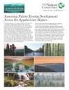 Assessing Future Energy Development Fact Sheet