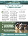 Fact Sheet: Stream Impacts