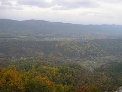 Species and Habitat Vulnerability Assessments of Appalachian Species and Habitats
