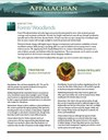 Fact Sheet: Habitat - Forest/Woodlands