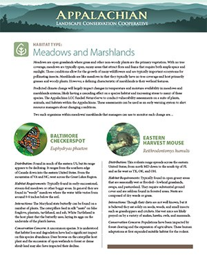 Fact Sheet: Habitat - Meadows and Marshlands