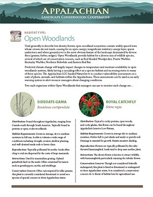 Fact Sheet: Habitat - Open Woodlands