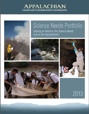 SN Portfolio Cover 2013