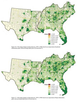 Southern Forest Futures
