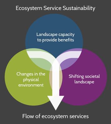 Ecosystem Service Sustainability