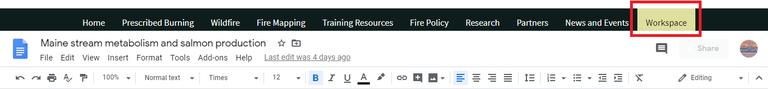Google Docs Tabs