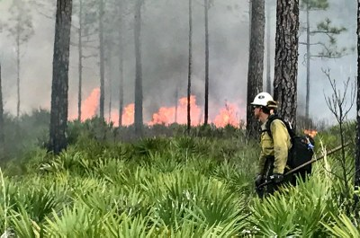 National Fire Mapping