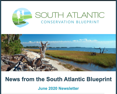 South Atlantic Blueprint Newsletter June 2020