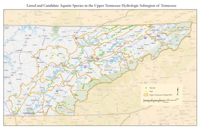 Map of Federally Listed Species within the UTRB in Tennessee