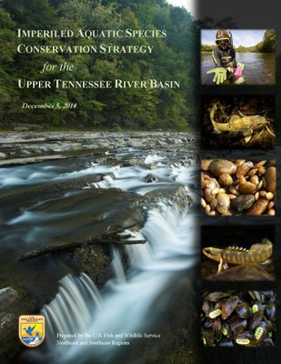 Conservation Strategy for Imperiled Aquatic Species in the UTRB