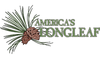 America's Longleaf Restoration Initiative