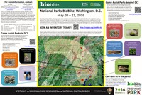 May 20-21, 2016. On May 20-21, 2016, National Capital  Region parks will host the National Parks BioBlitz – Washington D.C., a cornerstone event to celebrate the centennial of the National Park Service and Call to Action Goal #7 Next Generation Stewards. The BioBlitz is a 24-hour event intended to document and celebrate the biodiversity that exists in our national parks. Throughout the BioBlitz, we will be using teams, comprised of scientists and naturalists working alongside students, teachers, and you, the stewards of our National Parks, to conduct focused species inventories. The ecological heterogeneity of the parks affords many opportunities to catalog, record, and study diverse  organisms, ecological interactions, and biodiversity on a range of spatial and temporal scales. Concurrent with the BioBlitz inventories, we will host a Biodiversity Festival at Constitution Gardens on the National Mall.  The festival will include public presentations about biodiversity, nature inspired entertainment, structured scientific field activities, demonstrations of field technology, and exhibits ranging  from global biodiversity and citizen science initiatives to art and wildlife photography. Sign-up today to serve as an Inventory Leader, to be an iNaturalist Pro-Observer, to bring your classroom outside, or to be a citizen scientist. Or help us identify observations from the event, by going through pictures on iNaturalist.org.