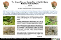 Mid-Atlantic Invertebrate Field Studies