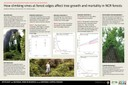 Interactions Between Climbing Vines and Forest Edges Influence Tree Mortality in Mid-Atlantic Forests