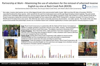 Maximizing the use of Volunteers for the Removal of Arborized Invasive English Ivy Vine at Rock Creek Park