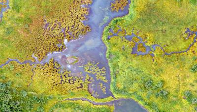 Landscape Partnership Spatial Datasets