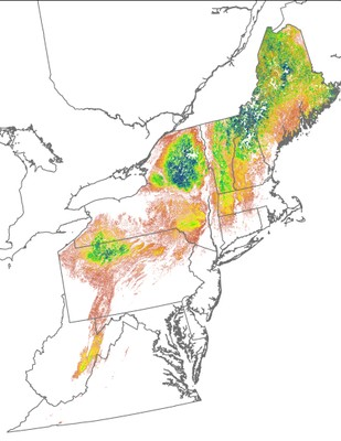 Landscape Capability for Blackburnian Warbler, Version 2.0, Northeast