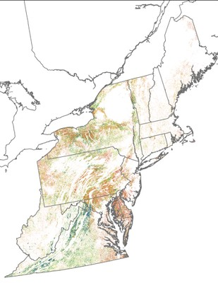 Landscape Capability for Eastern Meadowlark, Version 2.0, Northeast