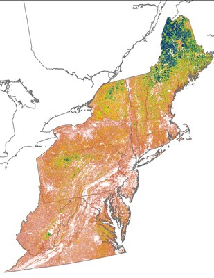 Landscape Capability for Wood Thrush, Version 3.0, Northeast U.S.
