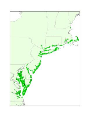 Northern Diamondback Terrapin Documented Occurrences, Northeastern U.S.
