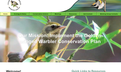 Golden-Winged Warbler Working Group