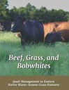 Beef, Grass, and Bobwhites – Quail Management in Eastern Native Warm-Season Grass Pastures