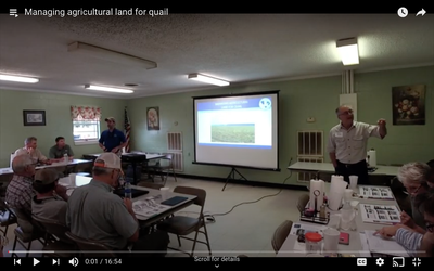 Managing agricultural land for quail