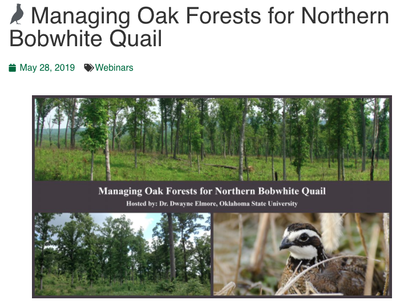 Managing Oak Forests for Northern Bobwhite Quail