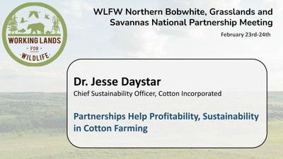 Partnerships Help Profitability, Sustainability in Cotton Farming: Dr. Jesse Daystar