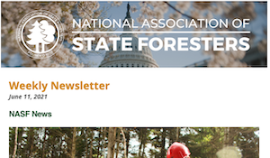 National Association of State Foresters Weekly Newsletter June 11 2021