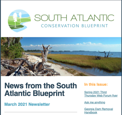 News from the South Atlantic Blueprint March 2021 Newsletter