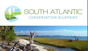 News from the South Atlantic Blueprint May 2021 Newsletter