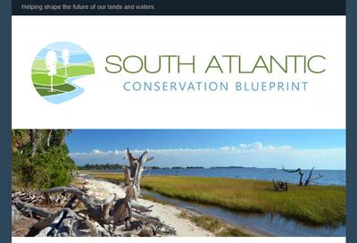 South Atlantic Blueprint February 2019 newsletter