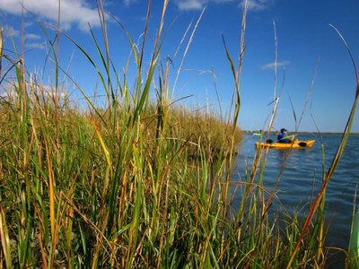 NatureServe Enhances LandScope Chesapeake Conservation Tool with New Data and Content