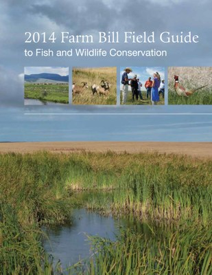New Farm Bill Guide Now Available