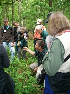 Online course and conference offered to Virginia forest landowners