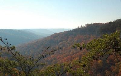 Partnership benefits two Kentucky landscapes