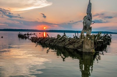 You're Invited to Help Protect Mallows Bay!