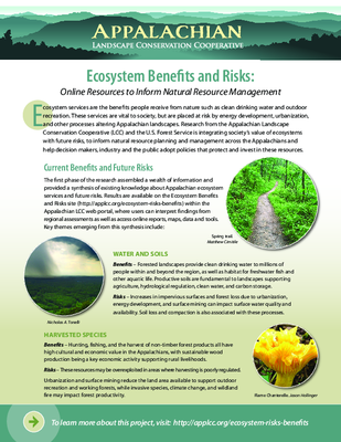 Ecosystem Benefits and Risks