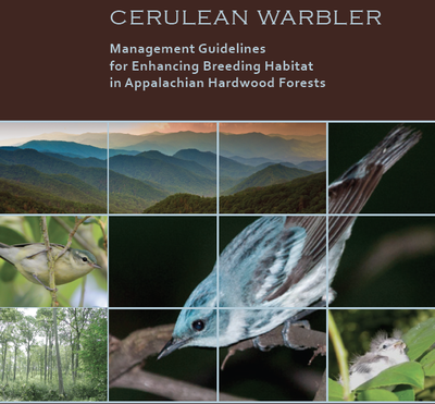 Cerulean Warbler Forest Management Project