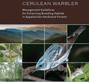 Cerulean Warbler Forest Management Project